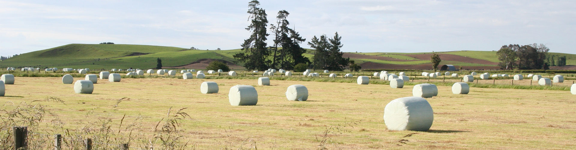 The 5 star wrapping film for silage bales